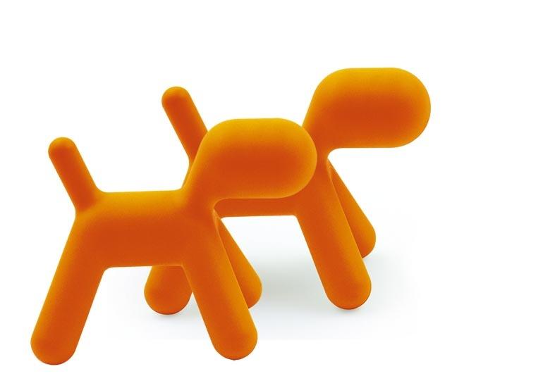 Puppy, liten, oransje