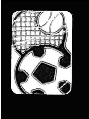 Symboletikett Sport, 500 stk.*utgår*