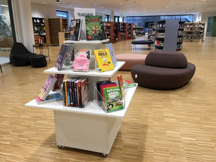 Maribo skolebibliotek, Danmark